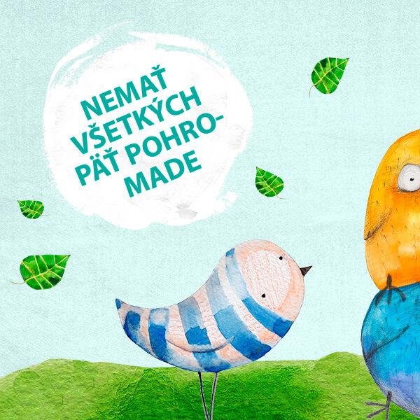 nemať všetkých päť pohromade fráza týždňa jazyková škola Best English Bratislava have a screw loose mať uvoľnenú skurtku